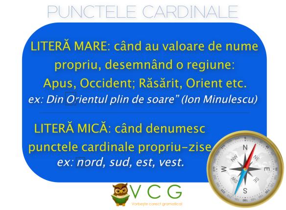puncteel cardinale.png