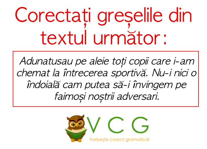 corectare text.png